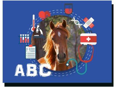 Medisch ABC