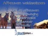 Tips voor je paard in de herfst
