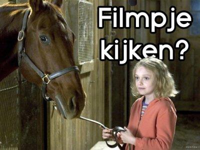 Paardenfilms!