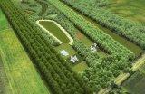 Landgoed De Wilddobbe; ideaal voor paardenliefhebbers